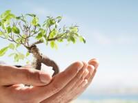 Η διαμόρφωση και ανάπτυξη του εαυτού κατά τον Carl Rogers